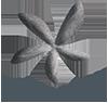 Limpiology- Consultoría, auditoría y formación en limpieza.